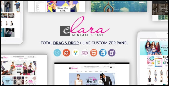 WP Clara - Multipurpose Responsive Minimalist WordPress Theme 1