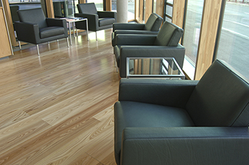 Conference Room Leather Treatment