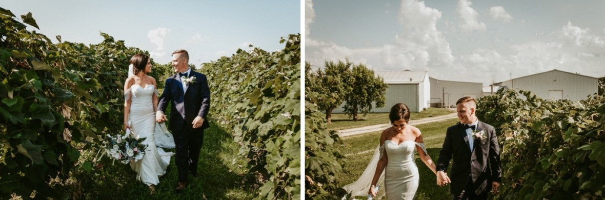 35_WCTM9283ab_WCTM9268ab_Winery_Indiana_Southern_Summer_Wedding_Huber's_orchard_Vineyard