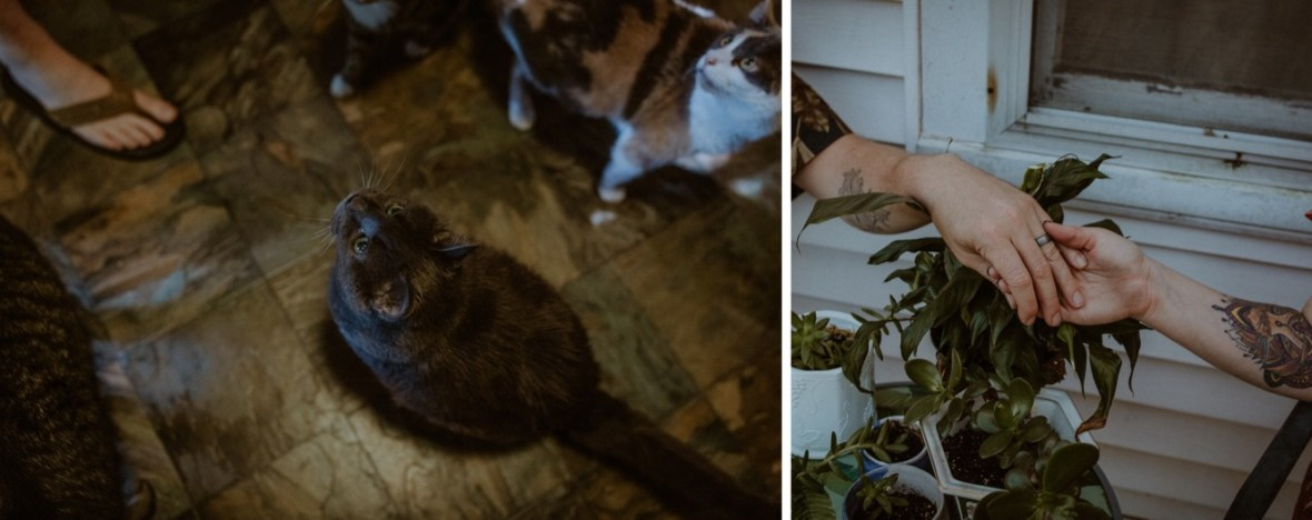 35_WCTM9400ab_WCTM8996ab_In_Louisville_Session_Kentucky_Home_With_Couples_Cats