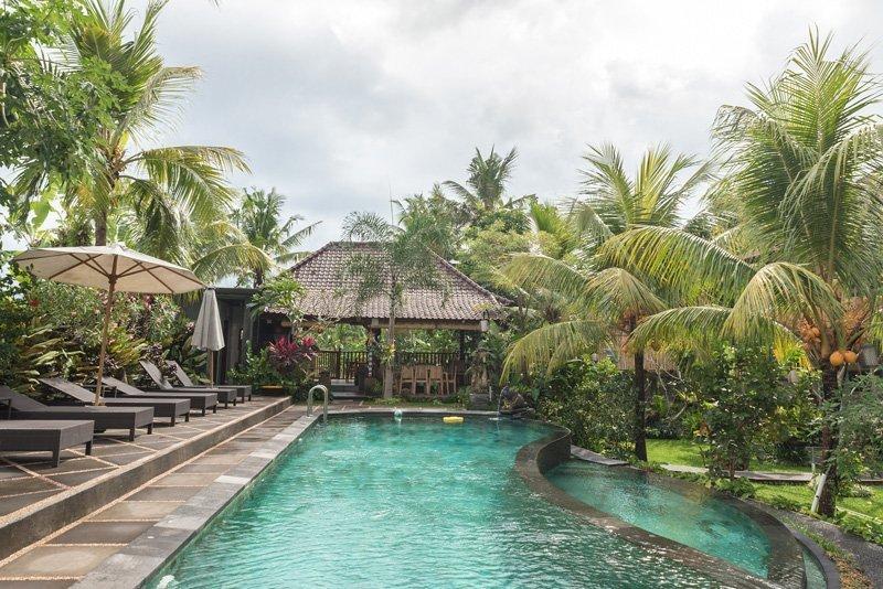 Piscina infinita y palmeras en el alojamiento Bucu Guest House - Ubud, Bali