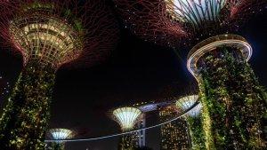 25 cosas que hacer en Singapur