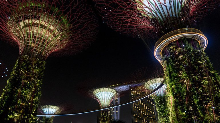 Espectaculo de luces en los Super Arboles de Gardens by the Bay, Singapur