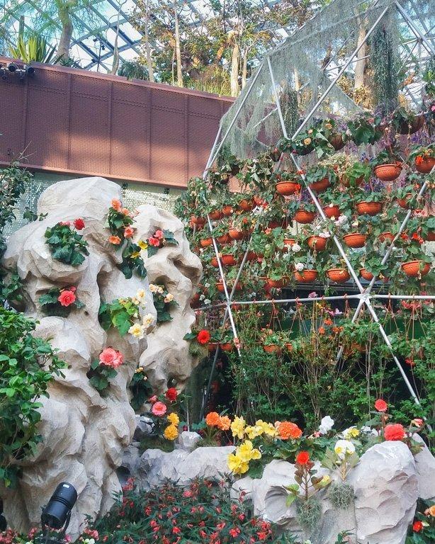 Macetas con flores de colores en el Flower Dome, Singapur