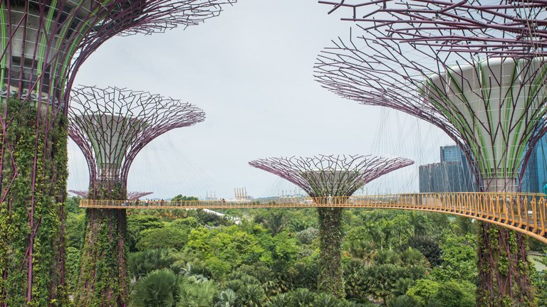 Pasarela conectando varios Super Arboles en Gardens by the Bay, Singapur