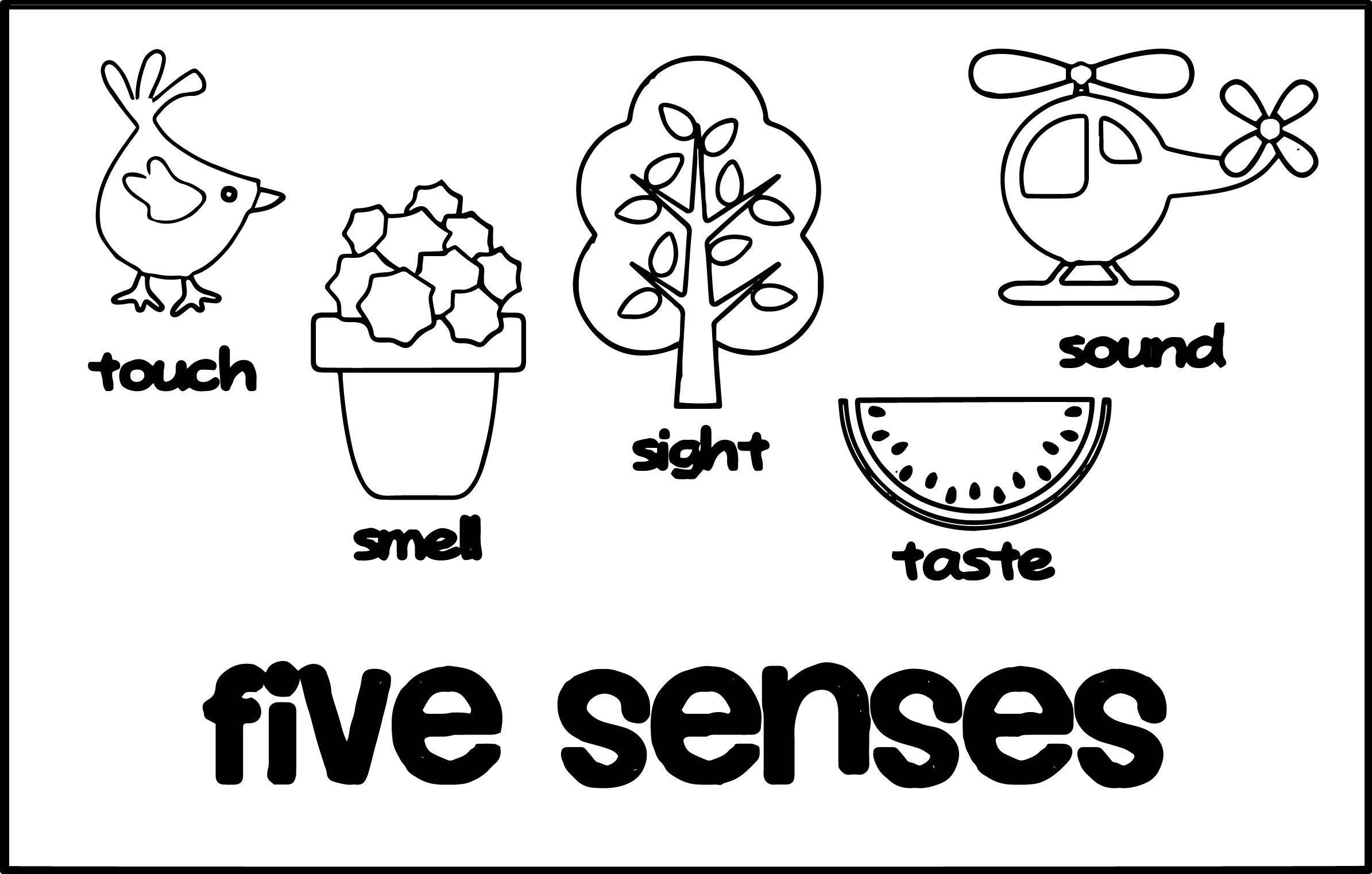 Kindergarten Five Senses Worksheet Printable Free