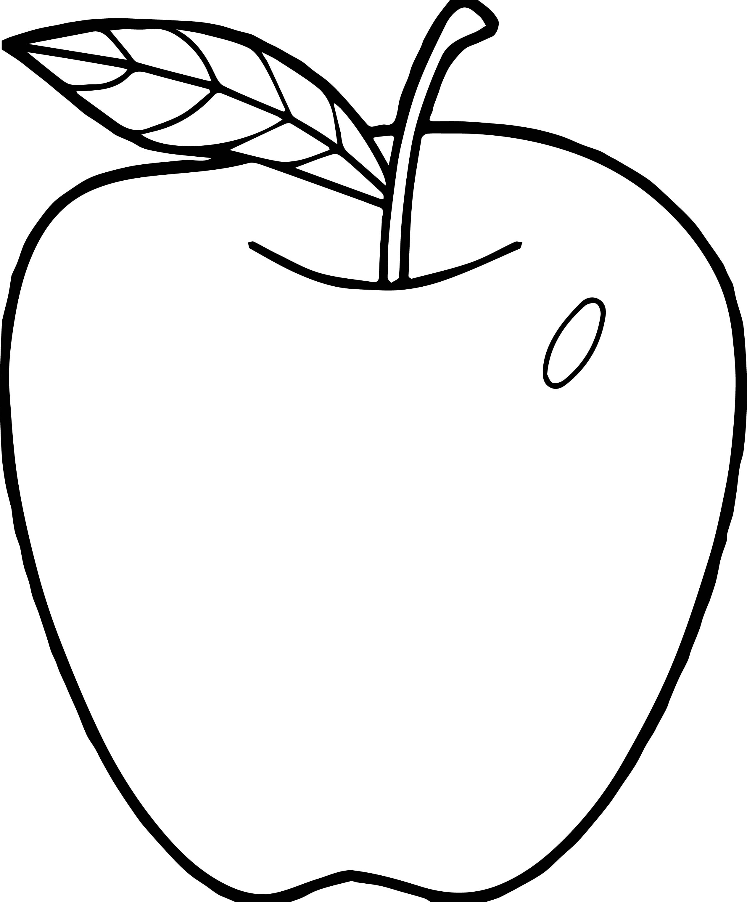 Parts Of An Apple Coloring Pages Nomenclature Cards