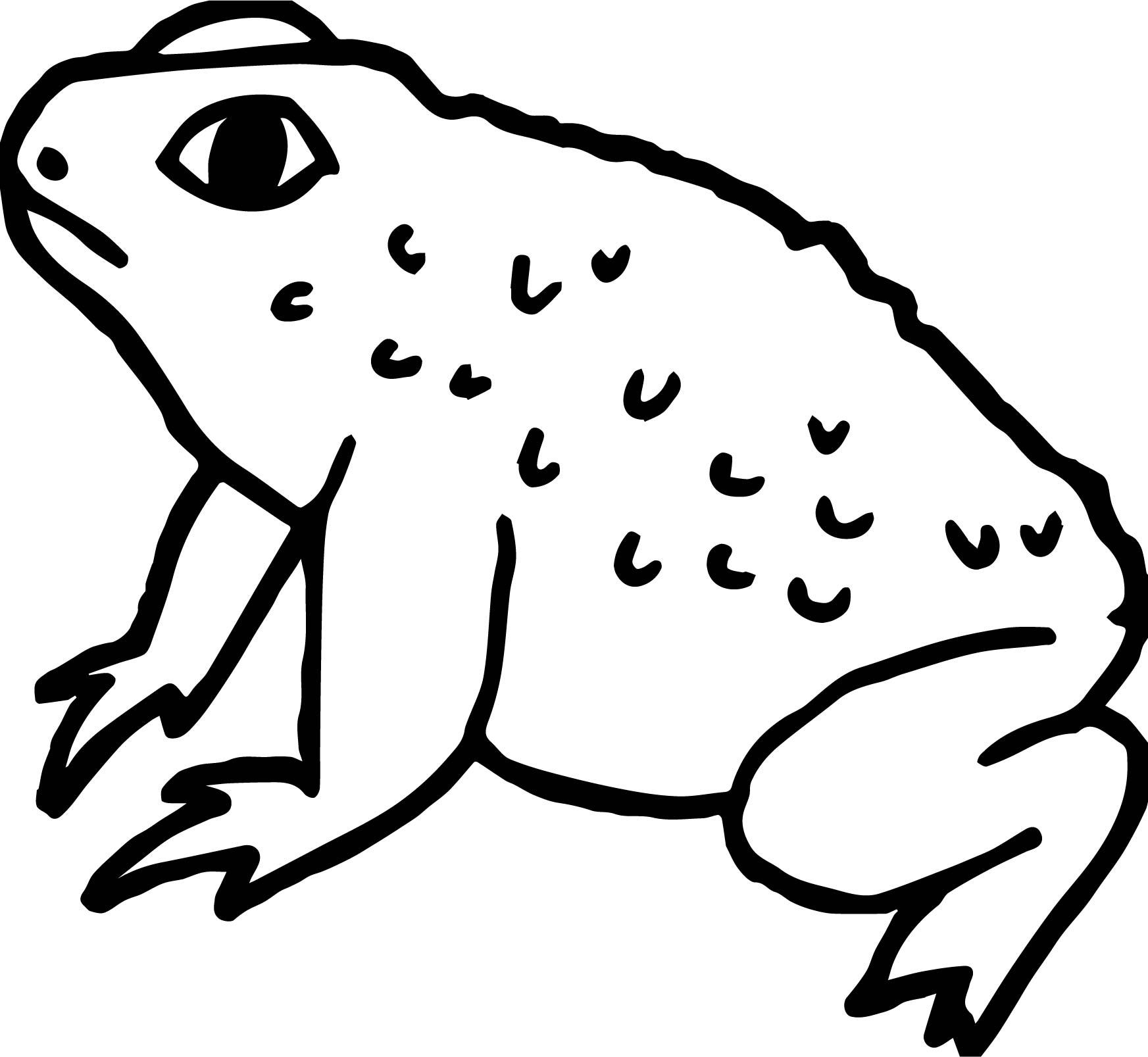 Big Frog Coloring Pages Big Frog Coloring Pages Coloring Pages