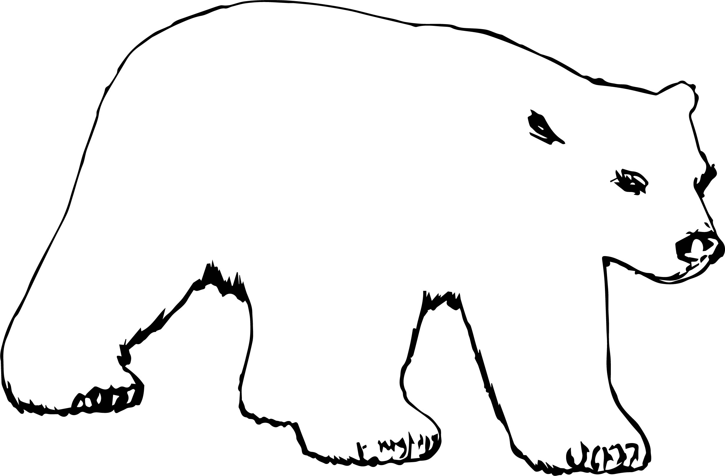 Also Bear Coloring Page