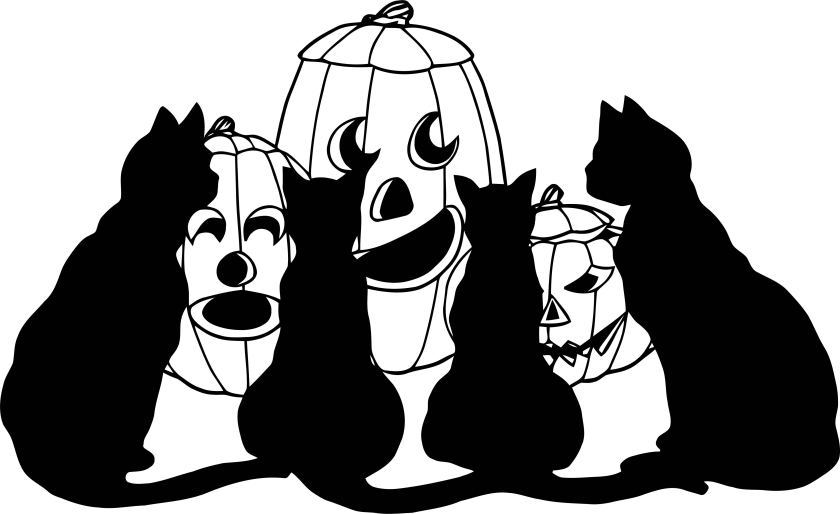 halloween pumpkin black cats coloring page