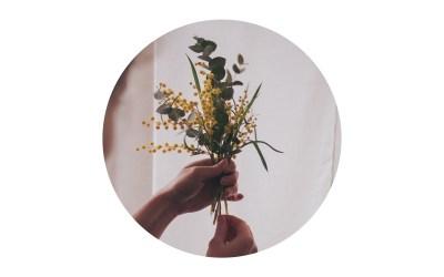 Interview mit Anne vom Floralen Atelier