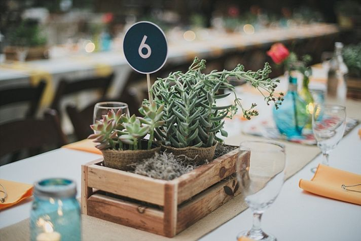 Succulent Centerpieces in Wooden Crate