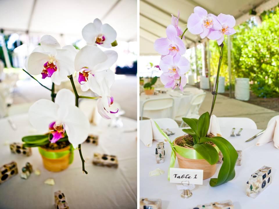 Centerpiece Arrangements Weddings