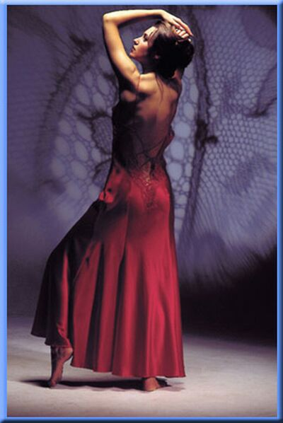 bridal lingerie d4
