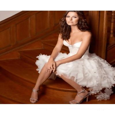 Strapless V-Neck Beaded Satin Organza Short Wedding Dresses