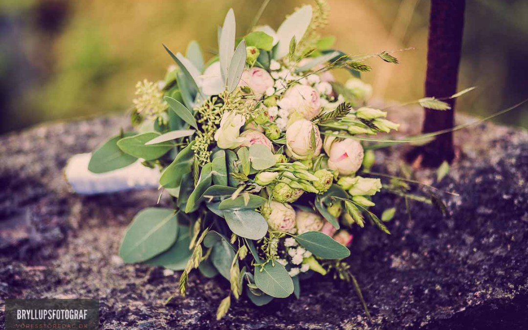 planning an outdoor wedding or reception