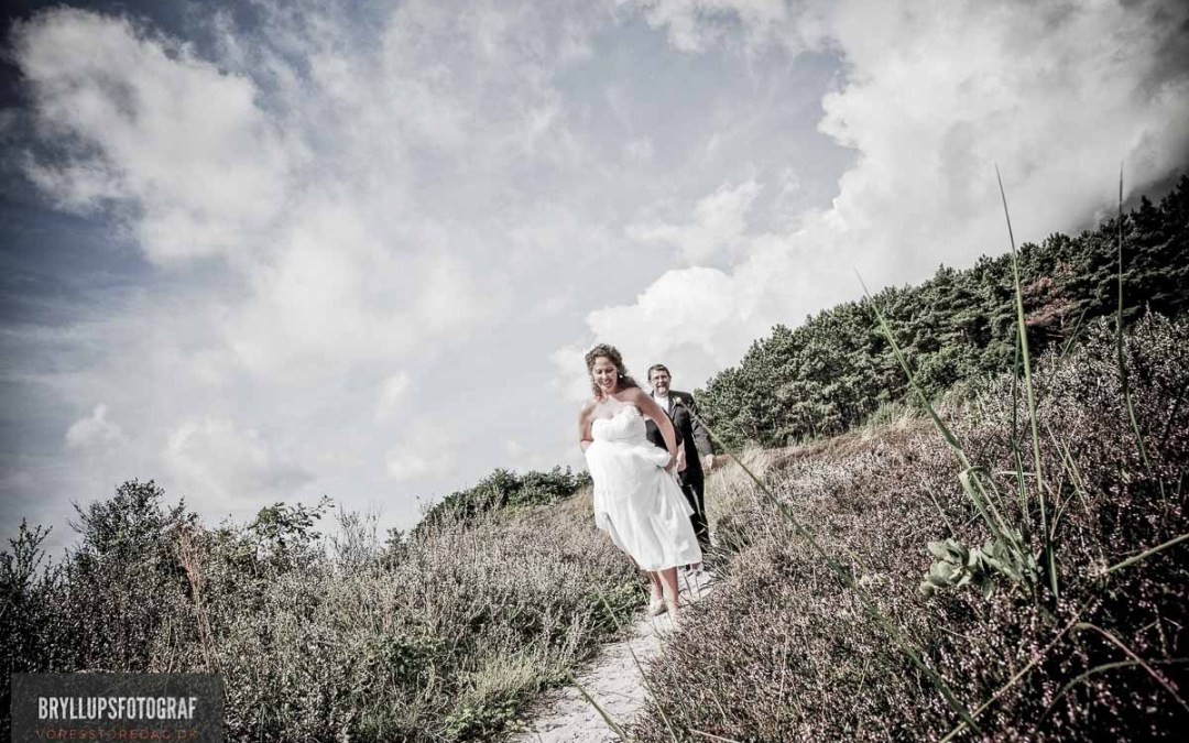 What You Need To Know To Successfully Plan A Wedding