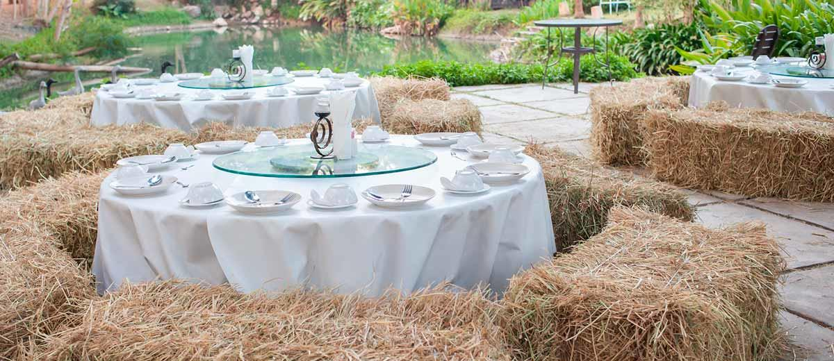 Reception Ideas And Tips