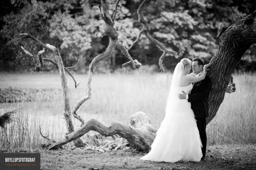 How Much Does a Wedding Photographer Cost