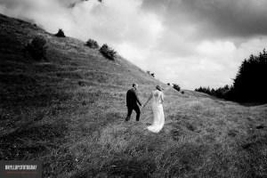 Wild weddings