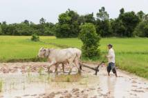 A photographers travels in SE Asia - Battambang, Cambodia