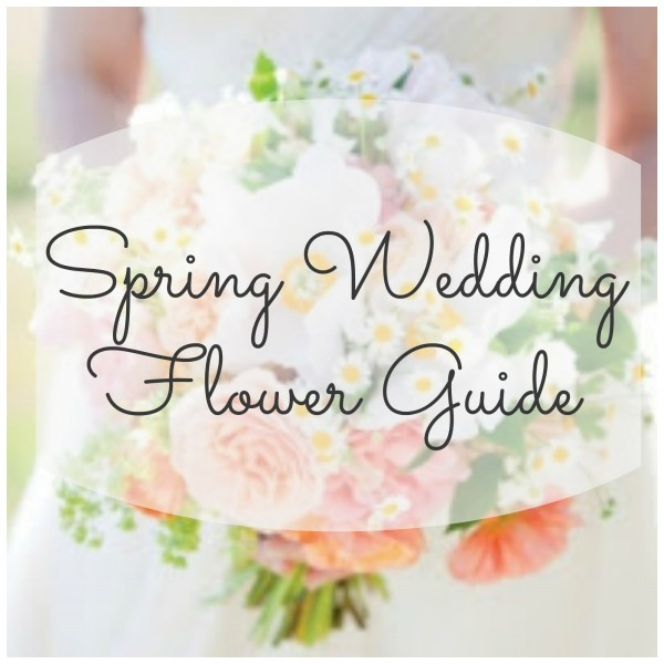 Spring wedding flower guide diy weddings are you planning a wedding for this spring this post from my wedding reception ideas has a great list of the most popular and available flowers in the mightylinksfo