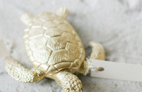 DIY Beach Critter Favors