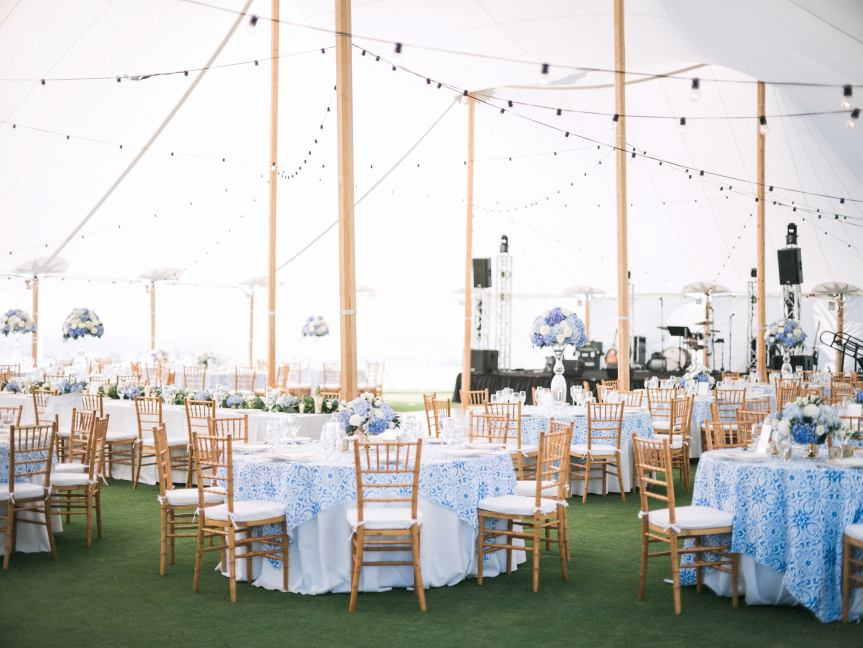 Reception in Blue and White