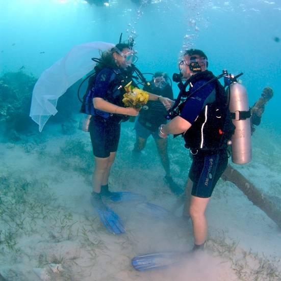 Underwater Dive Wedding Cayman ISlands Destination Wedding WeddingsAbroad.com