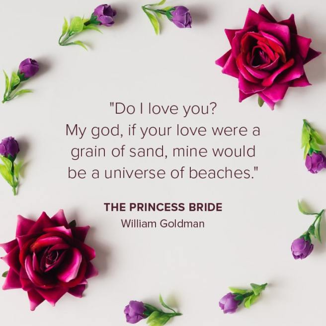 Do I Love You - The Princess Bride