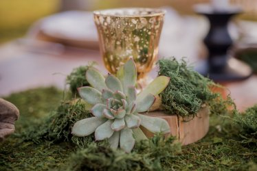wedding-succulents-mercury-glass