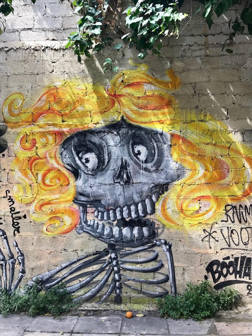 Athens graffiti books - We Dig Travel