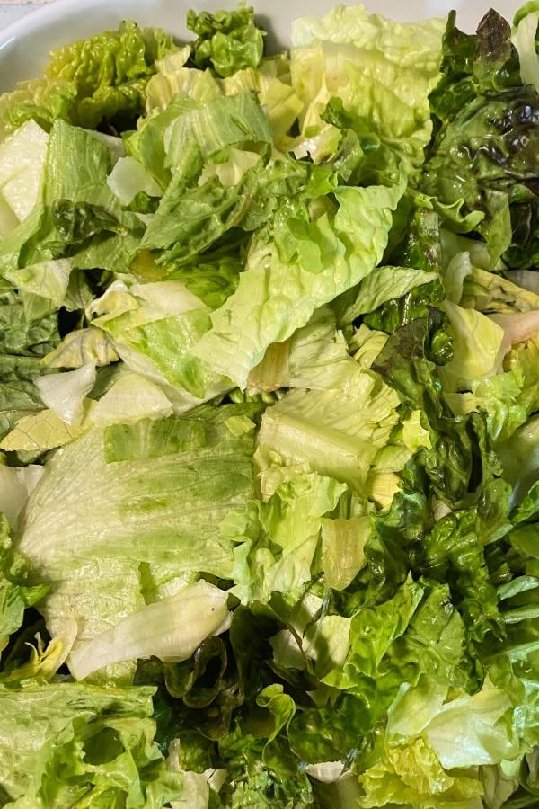 Lettuce in Bowl