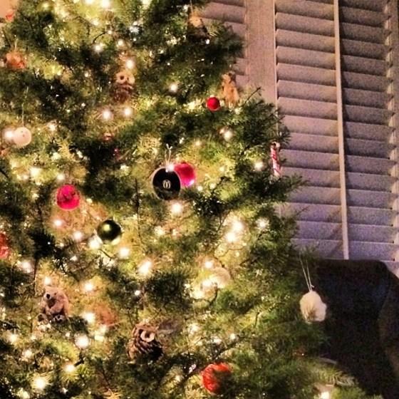 xmas tree instagram