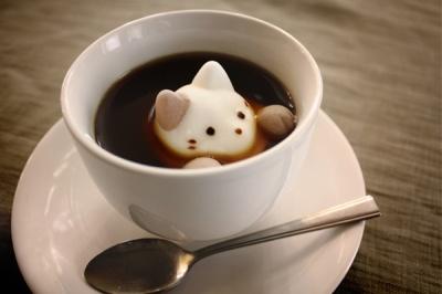 cat marshmallow