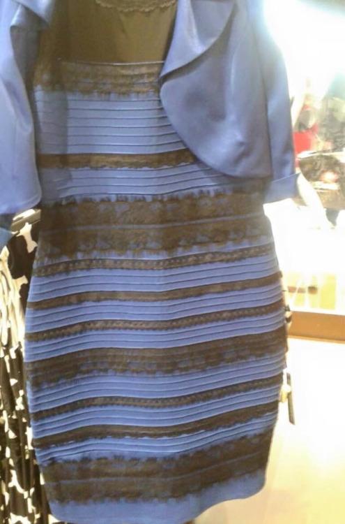 blue or white dress