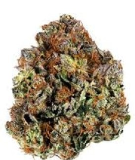 Buy Purple Passion Marijuana
