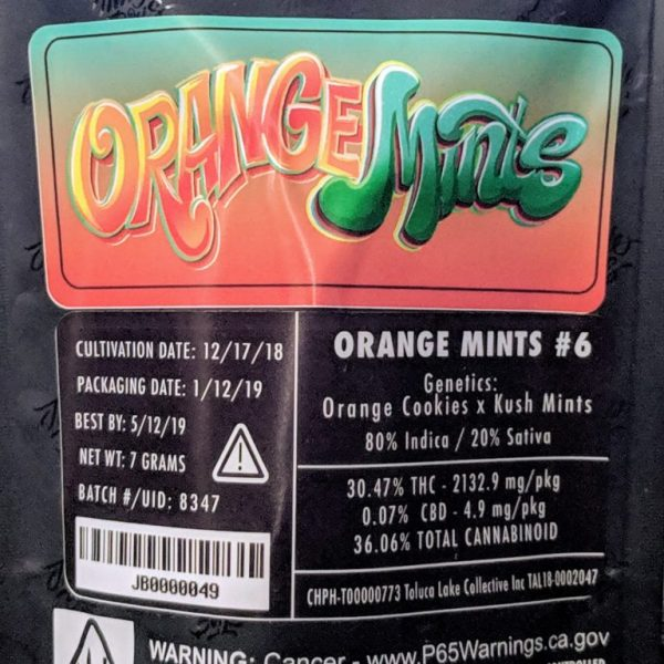 Buy Jungle boys Orange Mints #6 online