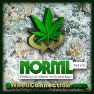 #NORML #News
