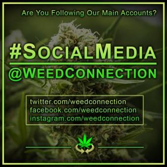 #SocialMedia @WeedConnection