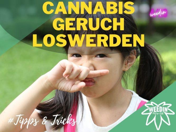 Möglichkeiten den Geruch von Cannabis loszuwerden