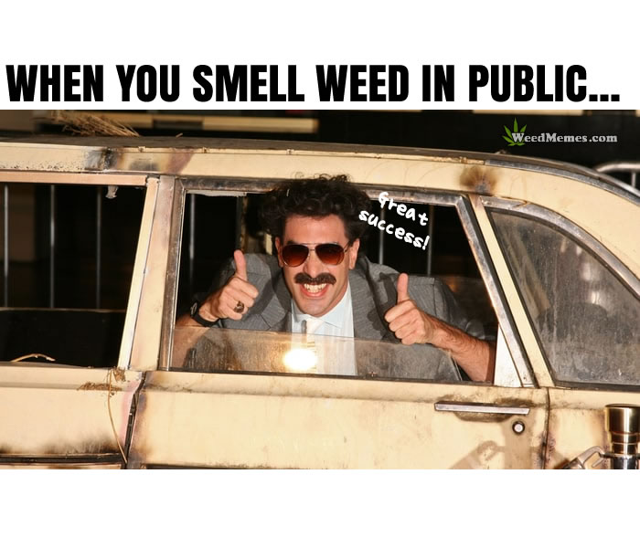 Smell Weed In Public Memes Funny Borat In Car Smells Weed Memes