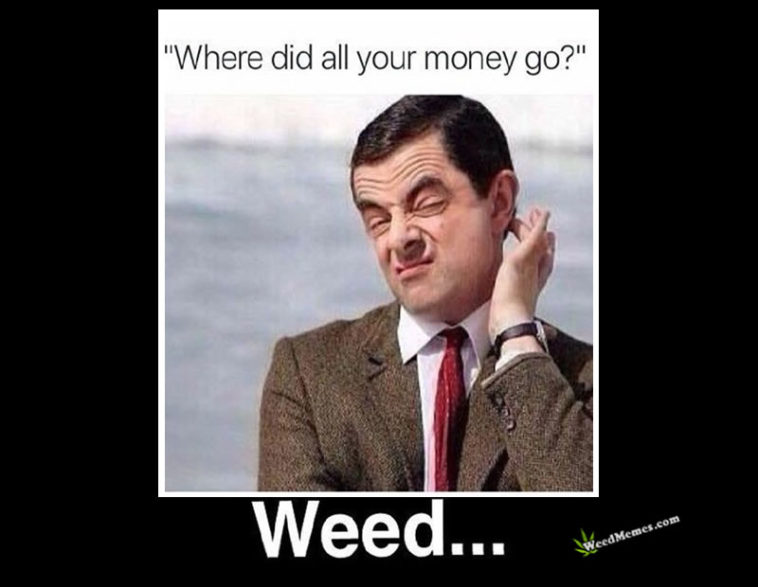 Mr Bean Where Did All Your Money Go Funny Weed Memes Weed Memes