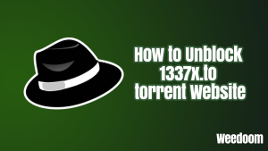 How to Unblock 1337x.to torrent Website