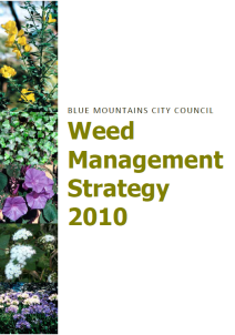 Weeds Strategy