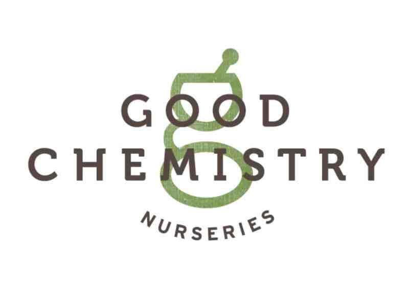 Good Chemistry | Aurora