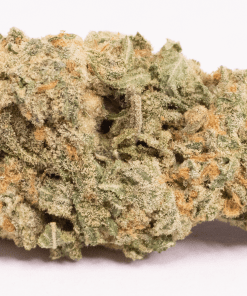 Online Dispensary Canada - Girl Scout Cookies Single