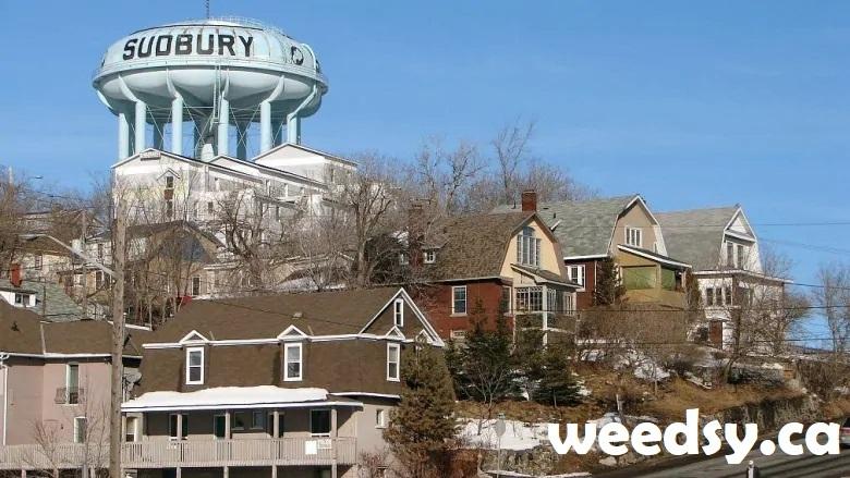 sudbury dispensary location