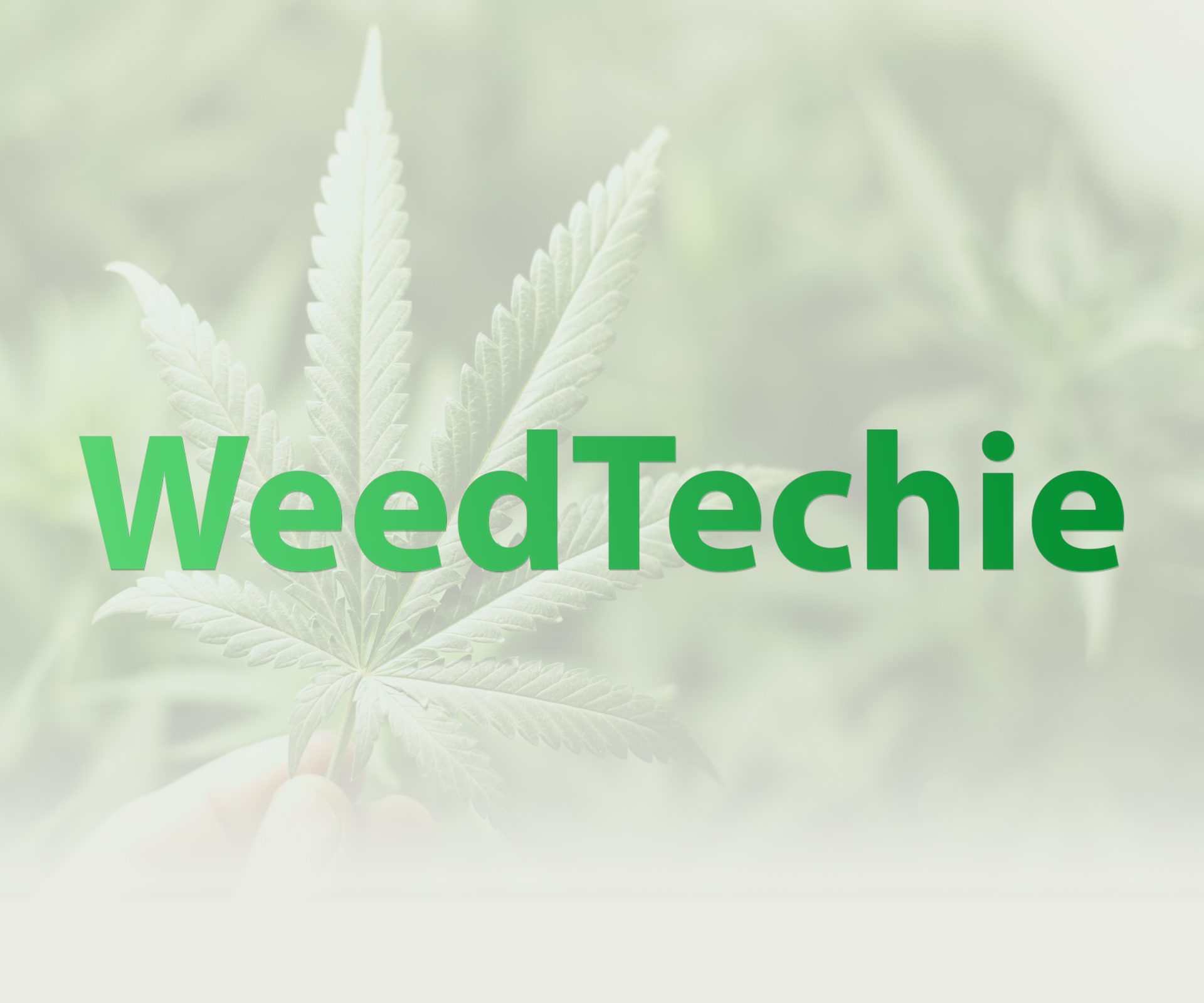 Welcome to WeedTechie! The internet's best cannabis site