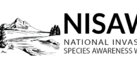 NISAW-horizontal-logo_cropped-1